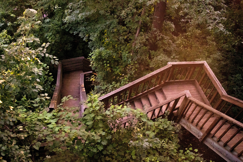 Wilke Glen and Cascade Falls   Osceola, Wisconsin   Staircase   Indigo Sahara   Travel & Lifestyle Blog