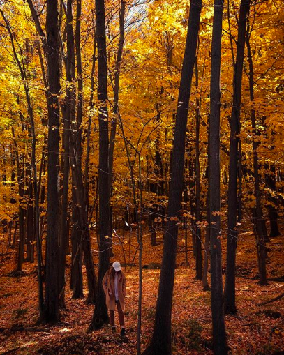 Rib Mountain, Wisconsin, in the fall   Indigo Sahara   Travel and Lifestyle Blog