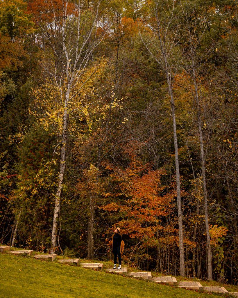 Wisconsin-Michigan Border in the Upper Peninsula in the fall   Indigo Sahara   Travel & Lifestyle Blog