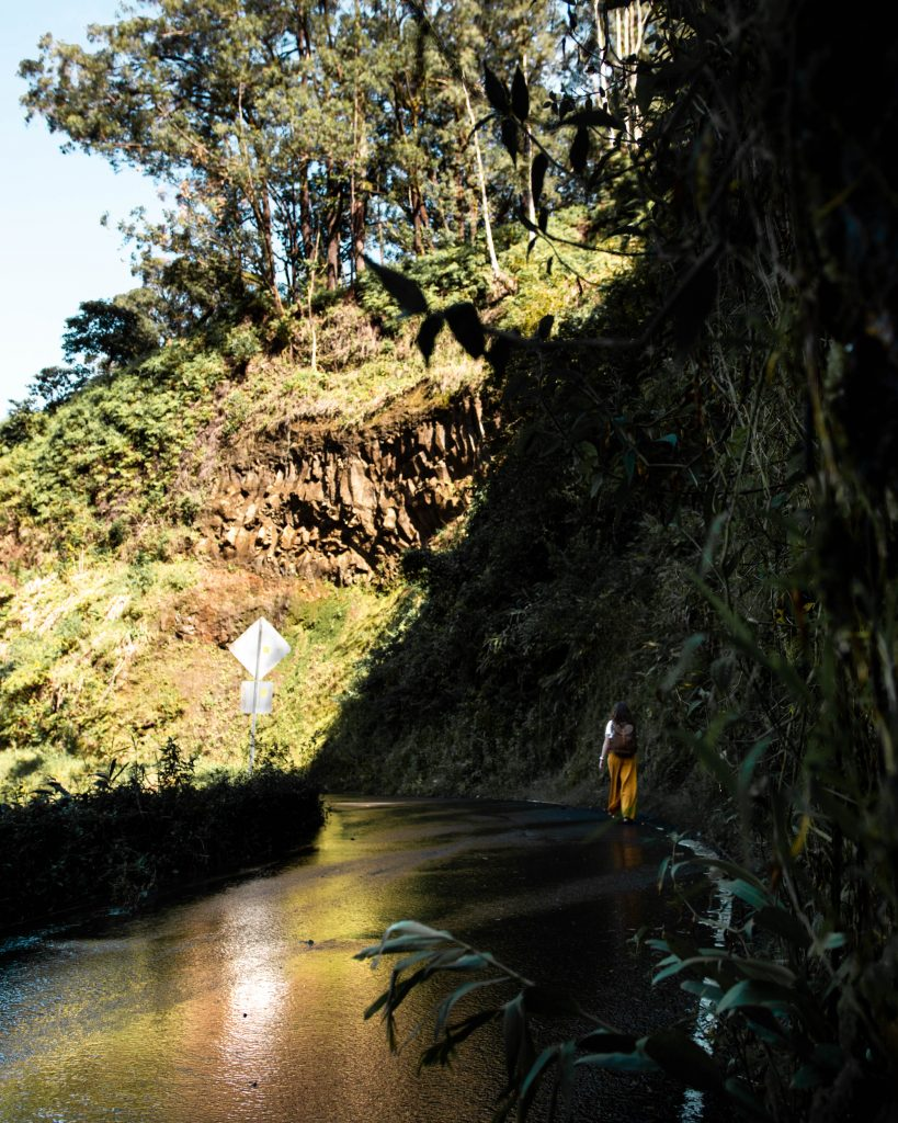 Road to Hana views in Maui